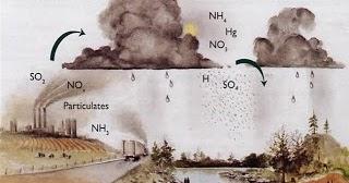 Trabajos de Ciencias Naturales: Lluvia ácida